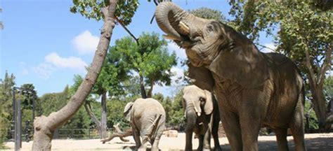 Sábados de aventura 2014. Actividades infantiles en el Zoo ...