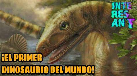 Sabías ¿Cuál Fue El Primer Dinosaurio Del Mundo?   YouTube