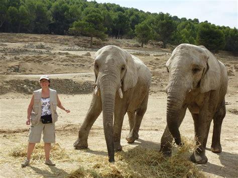 Safari Aitana  Penaguila, Spain : Address, Phone Number ...