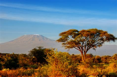 Safari au Kenya : Kenya essentiel. | Les Safaris Version Julie