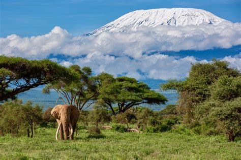 Safari Kenia Salvaje Lago Nakuru y Masai Mara | 5 noches ...