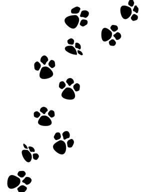 Safe Paints to Use for Making a Dog Paw Print | eHow.com ...