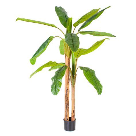 Saksıda Yapay Muz Ağacı 200 Cm   Yapay Yeşil Yapraklı Ağaç ...
