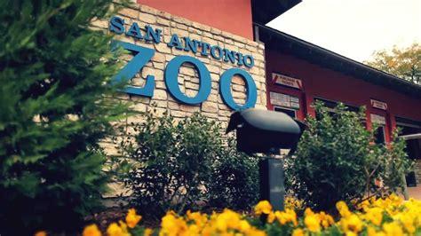 San Antonio Zoo   YouTube