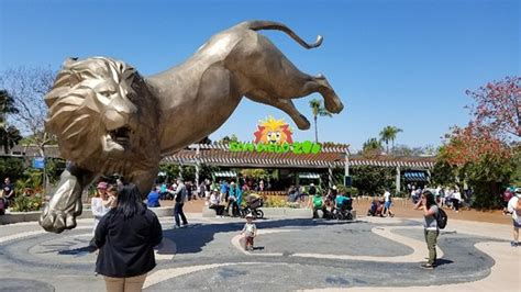 San Diego Zoo   2019 All You Need to Know BEFORE You Go ...