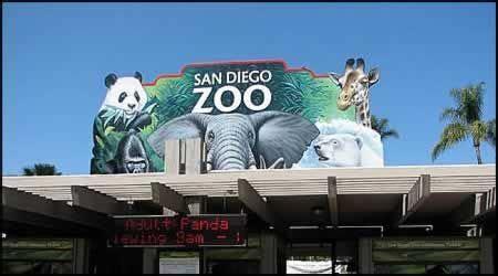 San Diego Zoo Discount Tickets Save $10.00 | Daytrippen ...