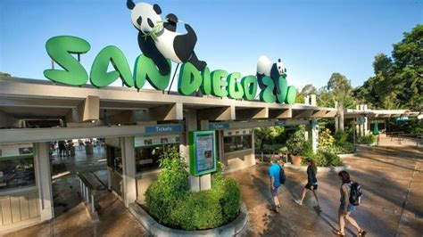 San Diego Zoo in 2020  With images  | Explore san diego ...