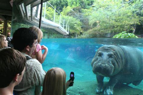 San Diego Zoo  San Diego, CA  2020 Review & Ratings ...