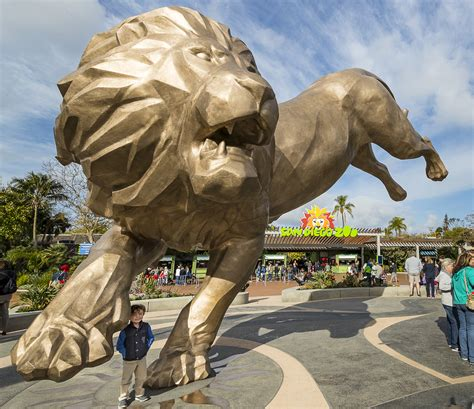 San Diego Zoo Tips and Visitor's Guide