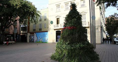 Sant Boi té gran arbre de Nadal 100% sostenible