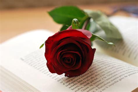 Sant Jordi   dia del libro y las rosas y ... los relojes ...