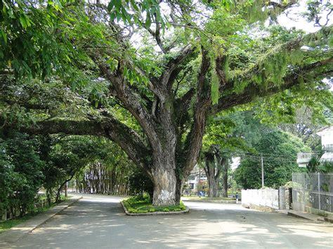 Santander de Quilichao   Wikipedia