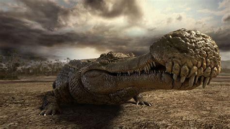 Sarcosuchus | Planet Dinosaur Wiki | FANDOM powered by Wikia