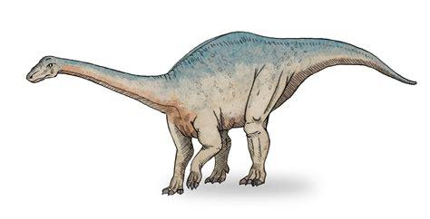 Sauropodomorpha   Wikipedia, la enciclopedia libre