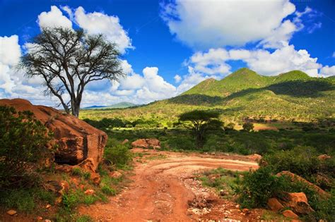 Savanna landscape in Kenya, Africa ~ Nature Photos on ...