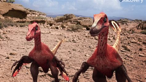 Scientists Recreated the Velociraptor Sounds   YouTube