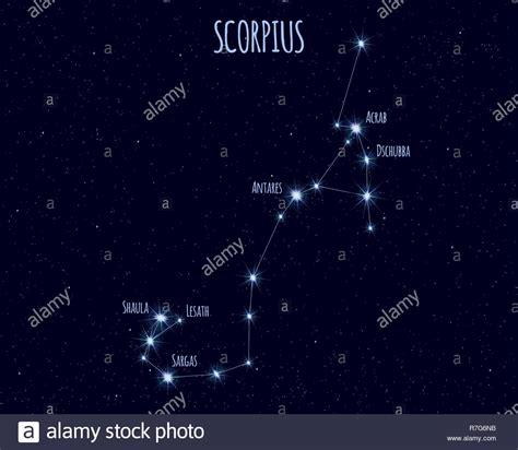 Scorpius Constellation Stock Photos & Scorpius ...