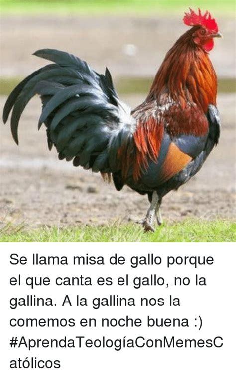 Se Llama Misa De Gallo Porque El Que Canta Es El Gallo No ...