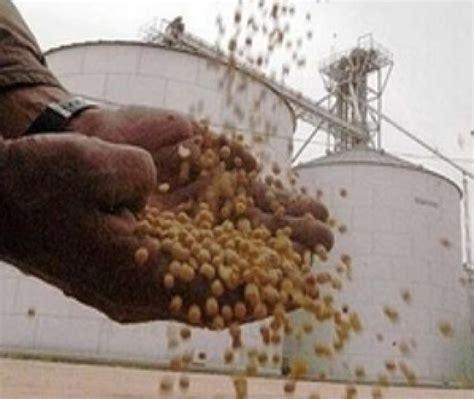 Se vendió en lo que va del año 35% menos de soja que en ...