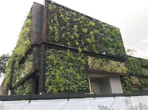 Sebastia   Muro verde con madera carbonizada en Cosmo ...