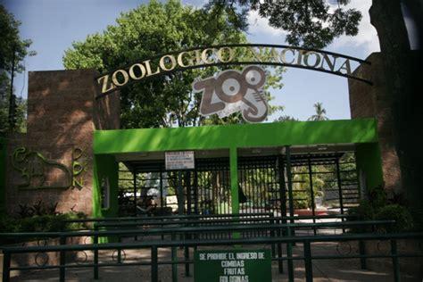 Secretaria de Cultura: «Zoológico Nacional está en proceso ...