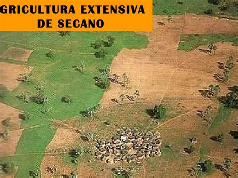 Sector primario.3º ESO