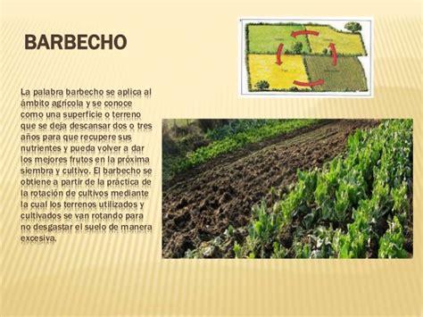 Sector Primario3ºB