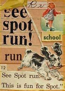 See Spot Run Book Cover | Run It Fast, I remember reading ...