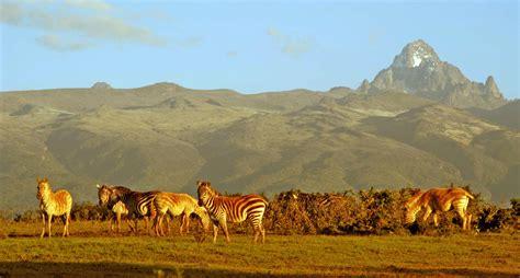 Séjour safari et plongée au Kenya   Arts et Voyages