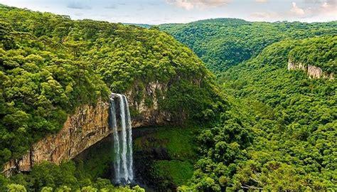 Selva Amazónica, Características, Ubicación, Clima ...