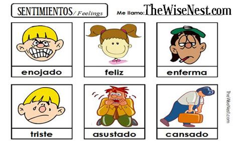 Sentimientos   Feelings   The Wise Nest