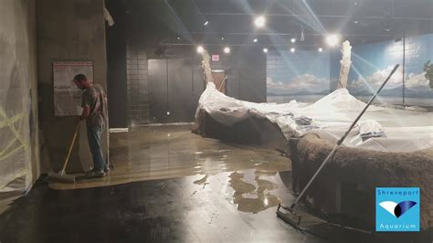 September 15th, 2017   Shreveport Aquarium Construction ...