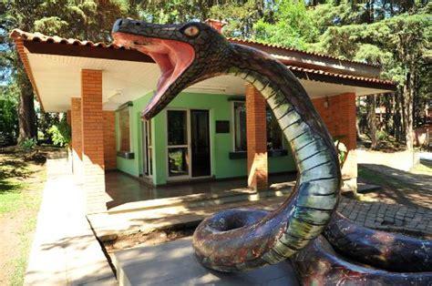 serpentário   Picture of Jardim Zoologico da UCS, Caxias ...
