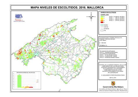 Servicio de Sanidad Forestal   Escolítidos infestación ...