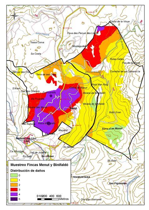 Servicio de Sanidad Forestal   Mapa daños Menut con nivelels