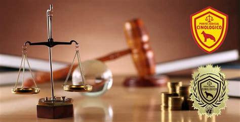 SERVICIOS – Perito Judicial Cinolgico