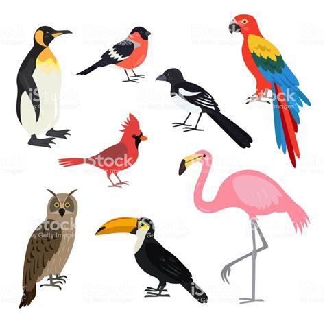 Set Of Cartoon Cute Birds On White Background Stock Vector ...