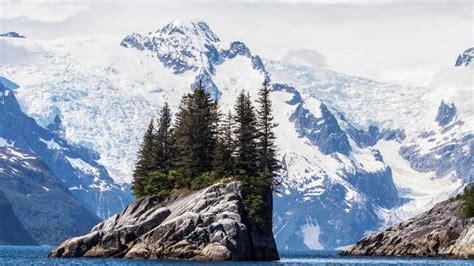 Seward: crucero de 7.5 horas por el Parque Nacional de los ...