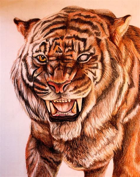 Shere Khan by EllyWithAWhy on DeviantArt