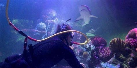 Shreveport Aquarium opens