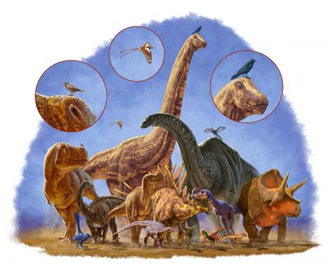 Shrinking helped dinosaurs and birds to keep evolving