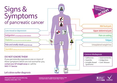 Signs & Symptoms of Pancreatic Cancer — Info You Should Know