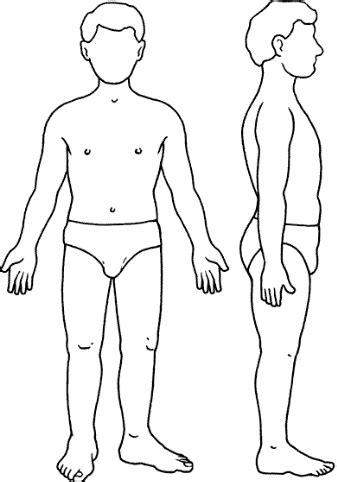 Silueta del cuerpo humano – WIKIPEKES