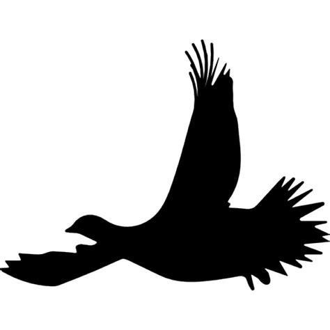 Siluetas De Aves   Fotos y Vectores gratis