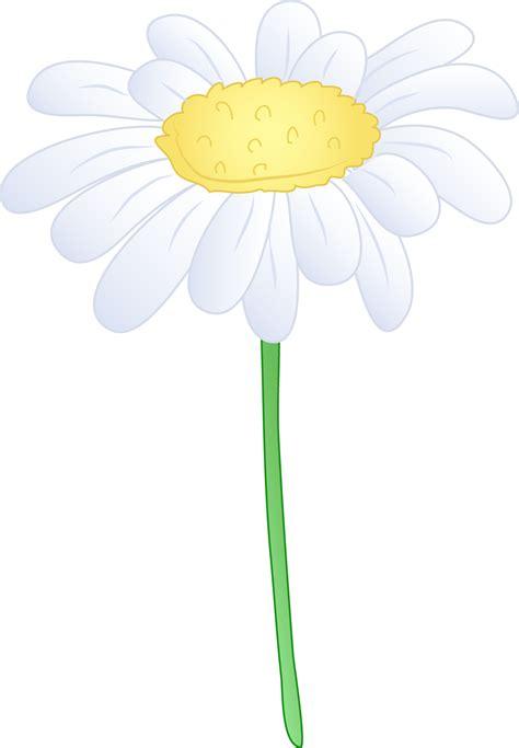 Single White Daisy Flower   Free Clip Art