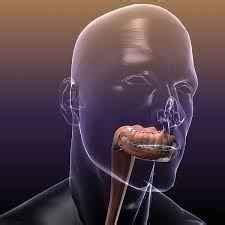 Síntomas de cáncer de boca  oral, bucal : primeros ...