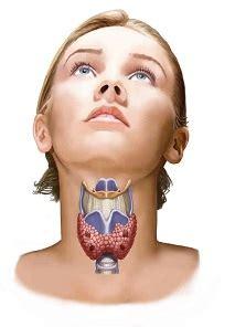 Sintomas do câncer de tireóide