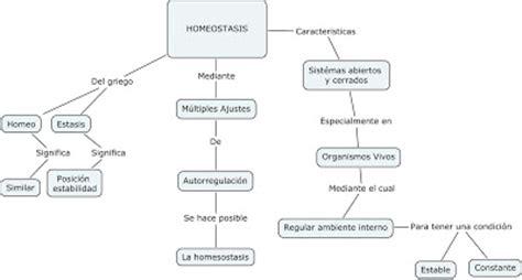 Sistémas de información: MAPA CONCEPTUAL DE HOMEOSTASIS