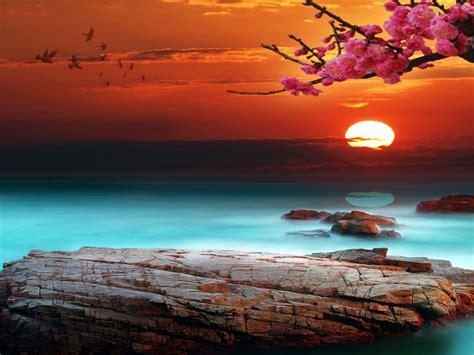 Sky Bright Sunset Desktop Background 333087 : Wallpapers13.com