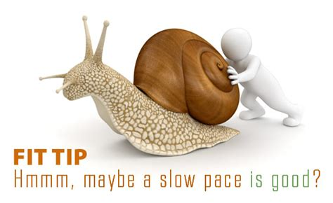 slow pace fit tip   Fitness Enhancement Personal Training ...
